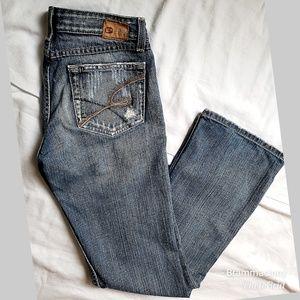 Buckle BKE Denim Starlite 18 Distressed Jeans